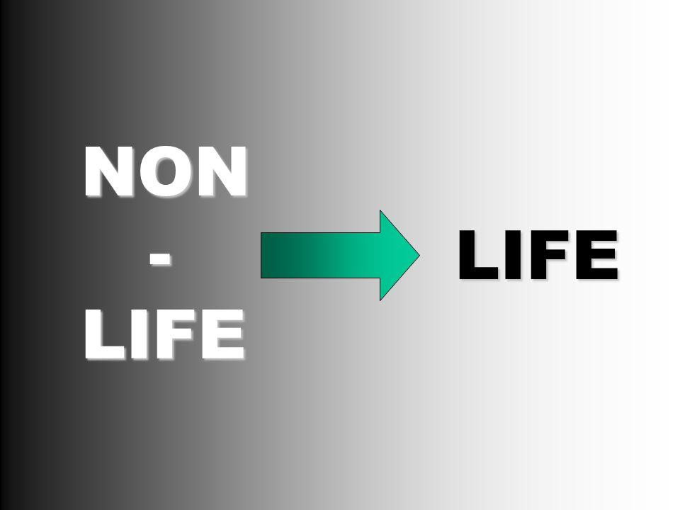 NON LIFE