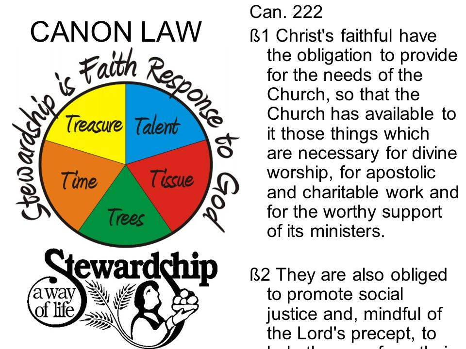 CANON LAW Can. 222 ß1 Christ's faithful have the obligation to provide for the needs of the Church, so that the Church has available to it those thing