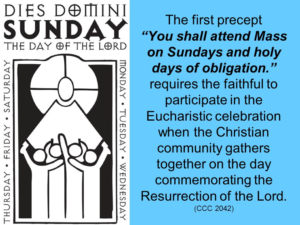 CATECHISM REFERENCE The faithful also have the duty of providing for the material needs of the Church, each according to his abilities.