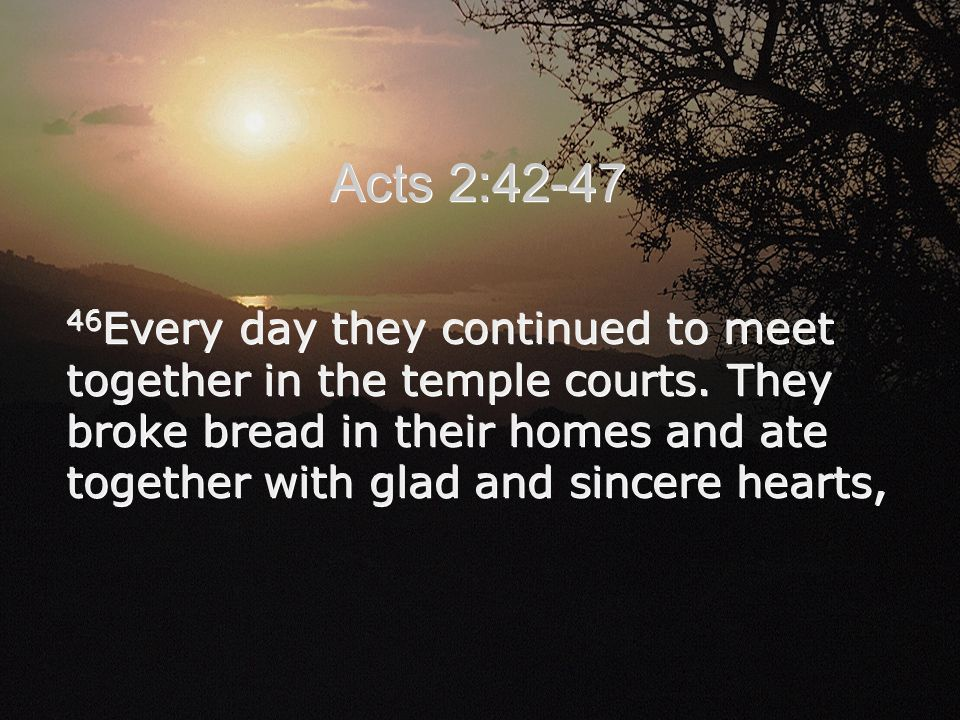46 Every day they continued to meet together in the temple courts. They broke bread in their homes and ate together with glad and sincere hearts, Acts