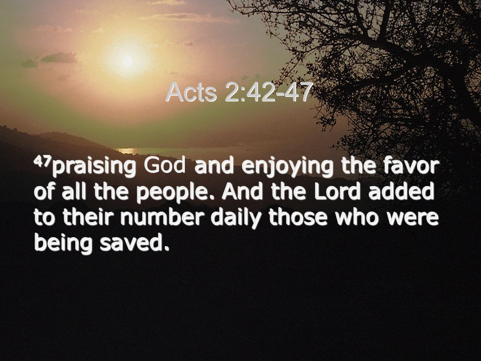 Causes and Results Apostasy Acts 2:42- 47