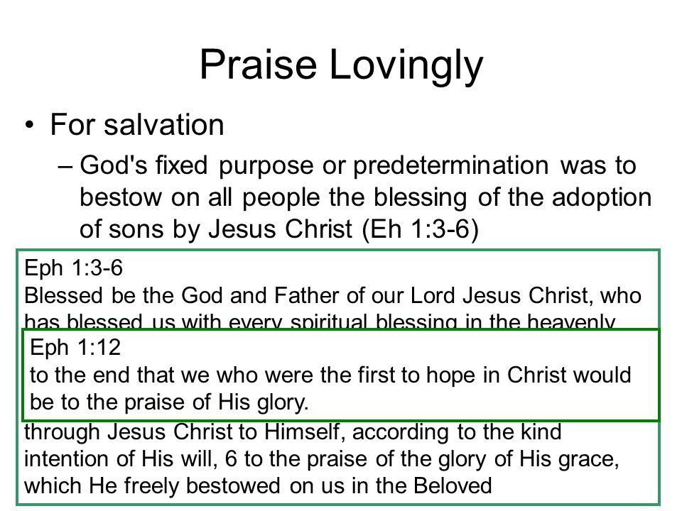 Praise Lovingly For salvation For righteousness (Phil 1:11) For faithfulness (1 st Peter 1:7) In worship –Hebrews 2:12 –Hebrews 13:15 Phil 1:11 having been filled with the fruit of righteousness which comes through Jesus Christ, to the glory and praise of God 1 Peter 1:7 so that the proof of your faith, being more precious than gold which is perishable, even though tested by fire, may be found to result in praise and glory and honor at the revelation of Jesus Christ Heb 2:12 saying, I WILL PROCLAIM YOUR NAME TO MY BRETHREN, IN THE MIDST OF THE CONGREGATION I WILL SING YOUR PRAISE. Heb 13:15 Through Him then, let us continually offer up a sacrifice of praise to God, that is, the fruit of lips that give thanks to His name.