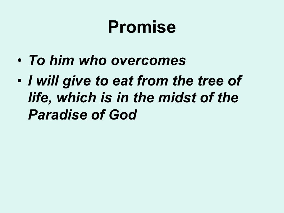 Promise To him who overcomes I will give to eat from the tree of life, which is in the midst of the Paradise of God