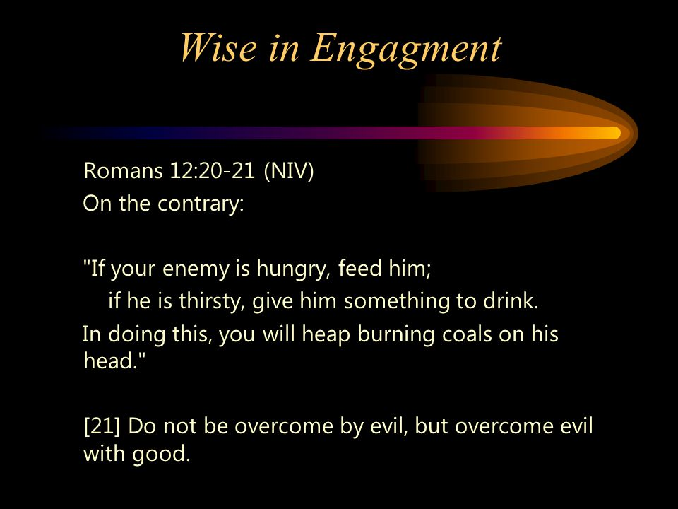 Wise in Engagment Romans 12:20-21 (NIV) On the contrary: