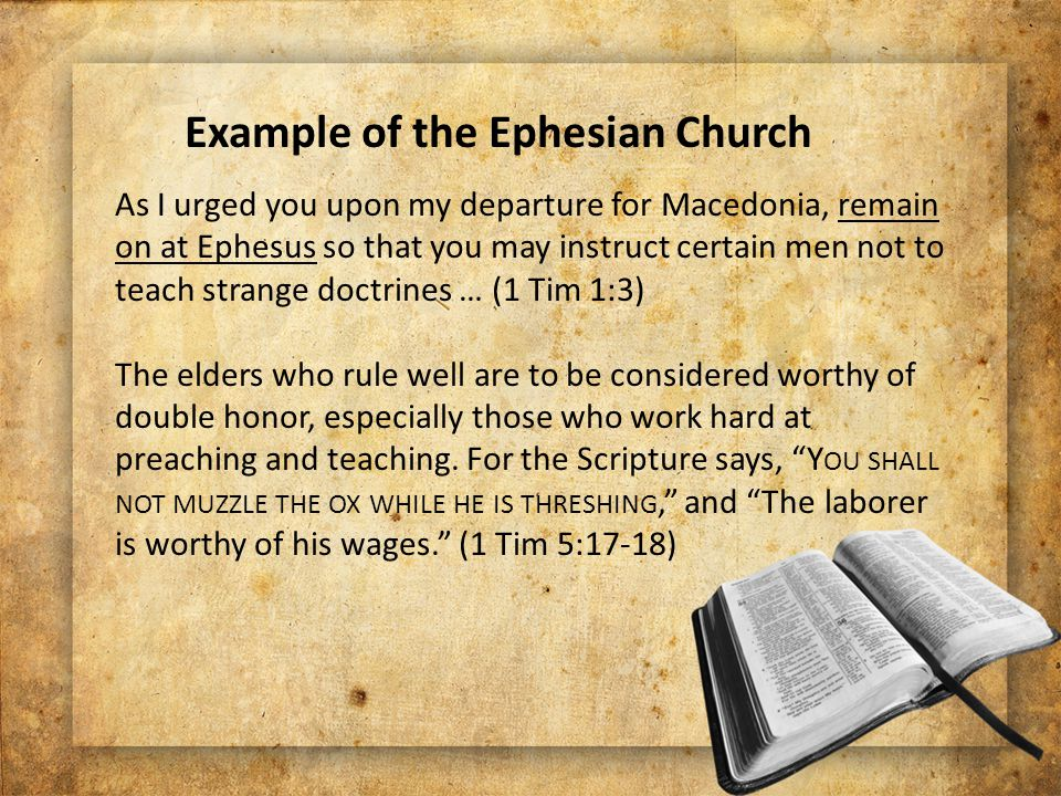 As I urged you upon my departure for Macedonia, remain on at Ephesus so that you may instruct certain men not to teach strange doctrines … (1 Tim 1:3) The elders who rule well are to be considered worthy of double honor, especially those who work hard at preaching and teaching.
