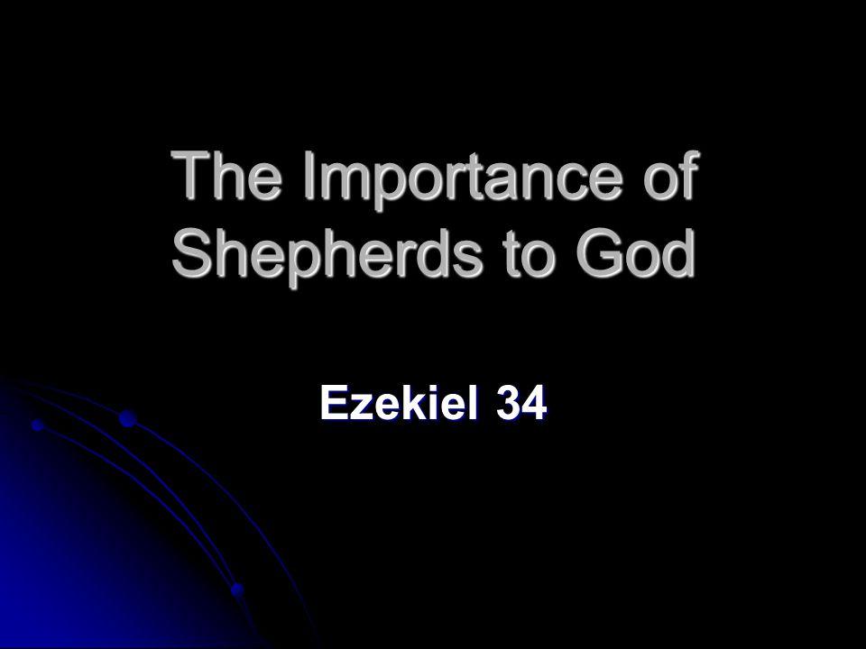 The Importance of Shepherds to God Ezekiel 34