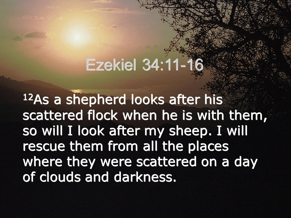 12 As a shepherd looks after his scattered flock when he is with them, so will I look after my sheep.