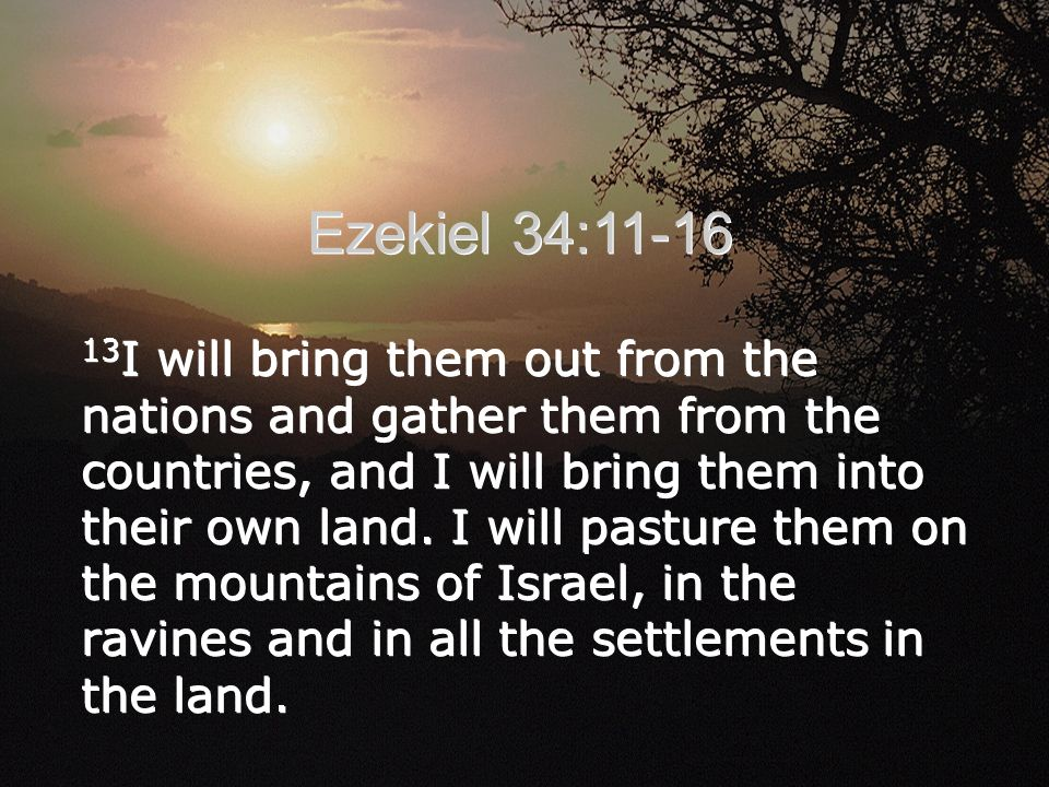 13 I will bring them out from the nations and gather them from the countries, and I will bring them into their own land.