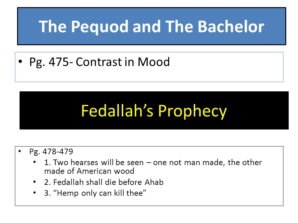 The Pequod and The Bachelor Pg. 475- Contrast in Mood Fedallah's Prophecy Pg.