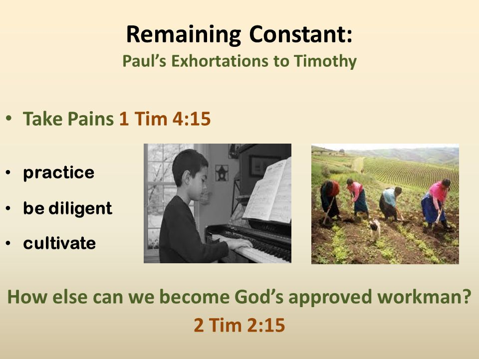 Remaining Constant: Paul's Exhortations to Timothy Be Absorbed 1 Tim 4:15 lit.