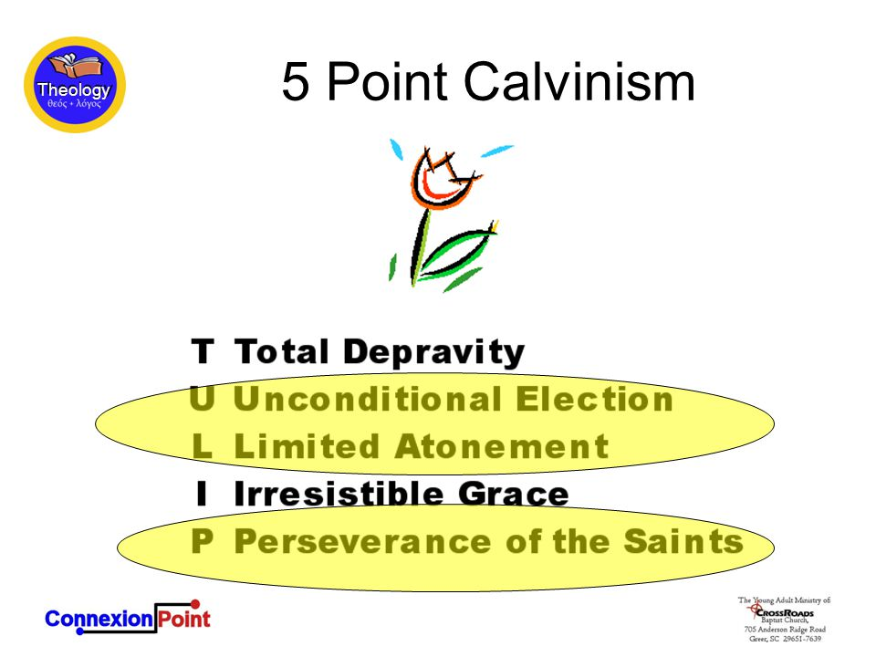 Theology 5 Point Calvinism