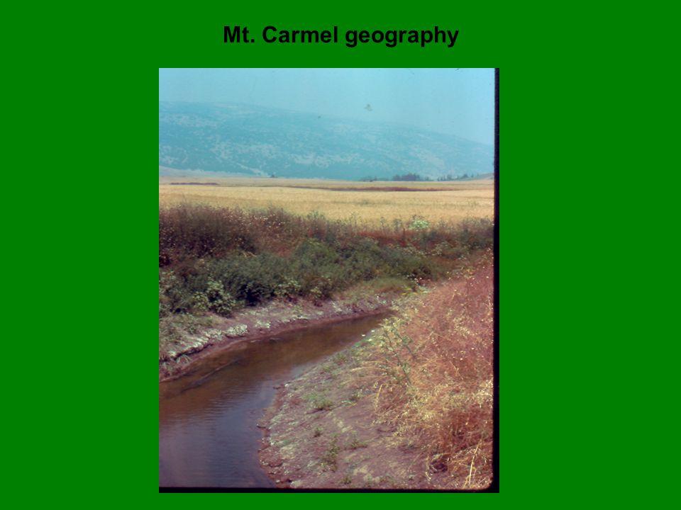 Mt. Carmel geography