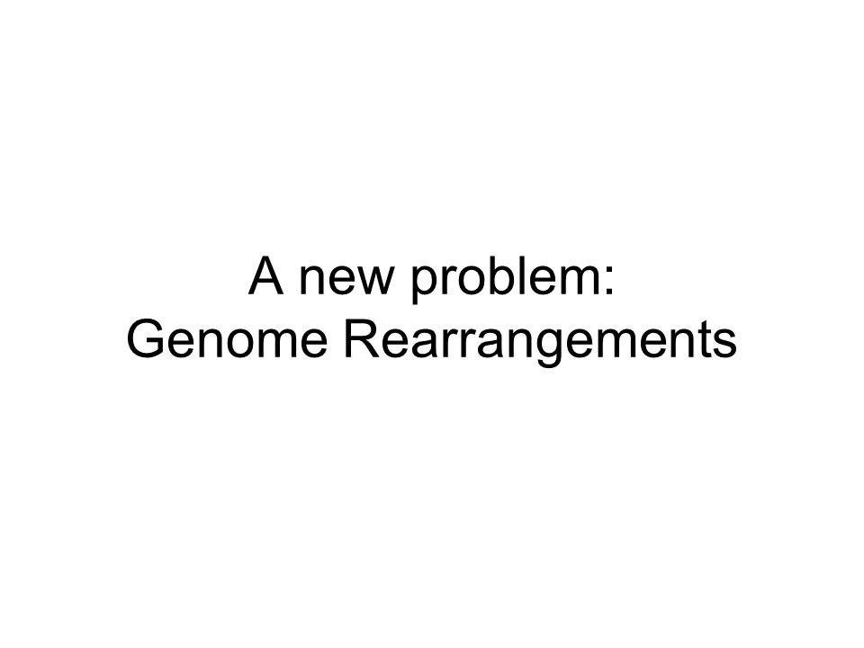 Genome Rearrangements Most mouse genes have human orthologs (i.e., share common evolutionary ancestor) The order of genes in the mouse genome is not exactly the same as in human However, there are subsets of genes with preserved order between human-mouse ( in synteny )