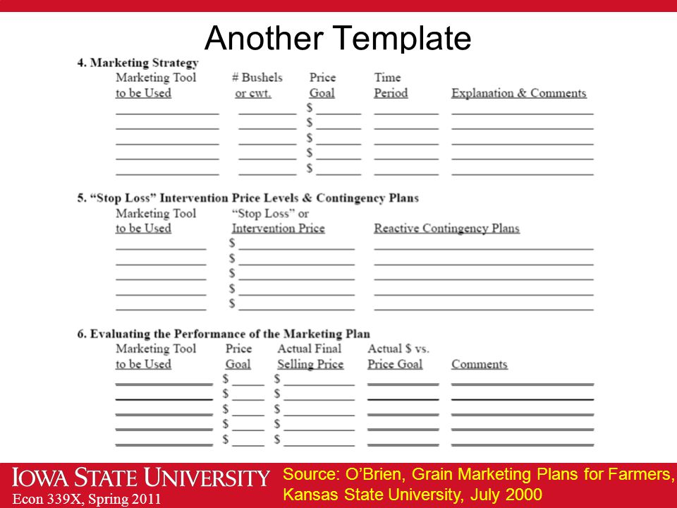 Econ 339X, Spring 2011 Another Template Source: O'Brien, Grain Marketing Plans for Farmers, Kansas State University, July 2000