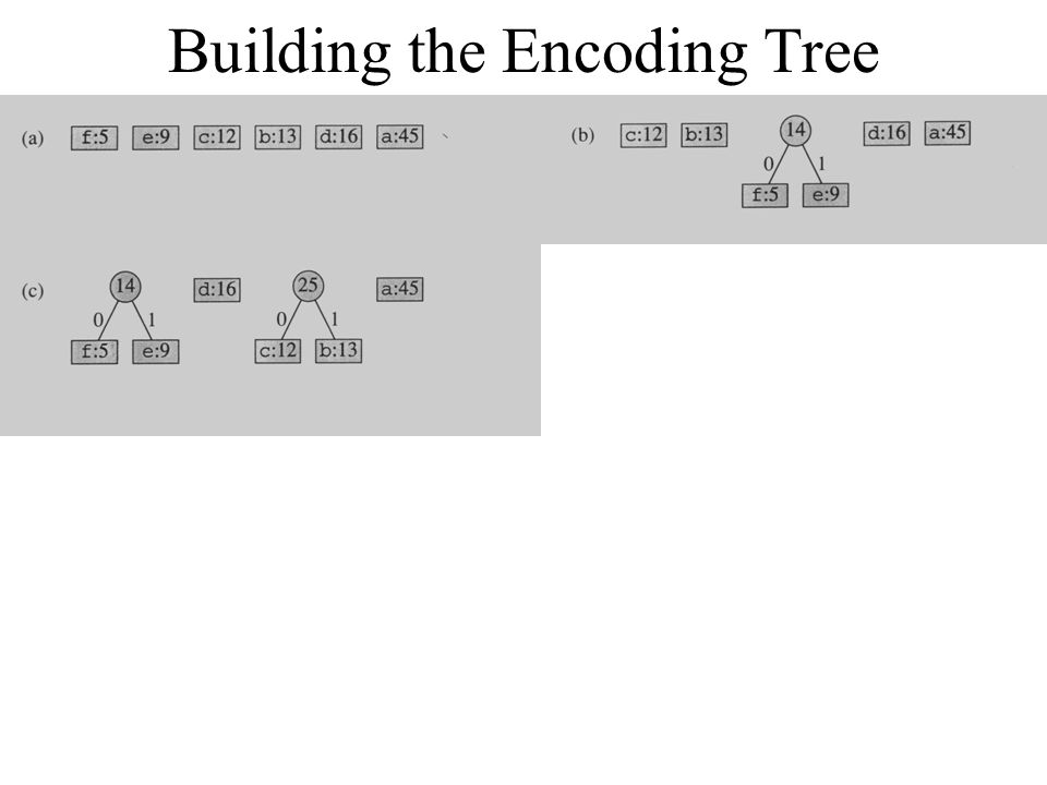 Building the Encoding Tree
