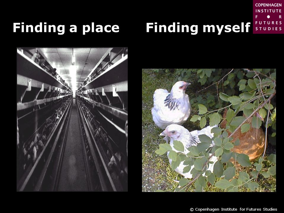 © Copenhagen Institute for Futures Studies Finding a place Finding myself