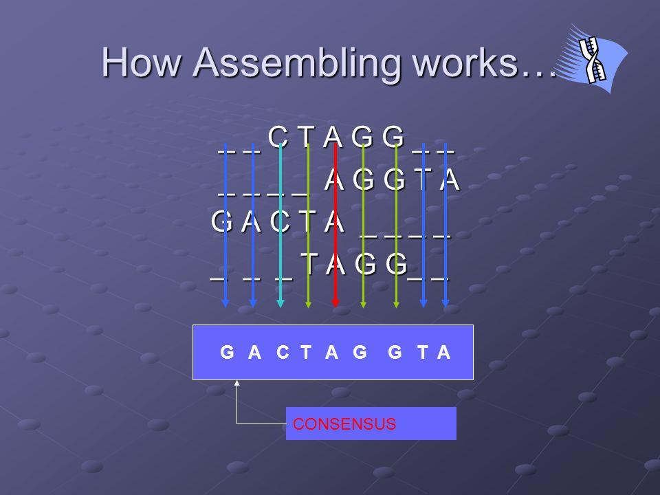 Important results [def.] F and G are equivalent if F dominates G and G dominates F F = {TGA, CTTGAA, ACTTGAA} G = {TTGA, ACTTGAA}