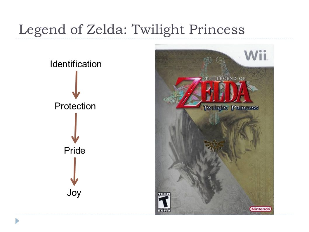 Legend of Zelda: Twilight Princess Identification Protection Pride Joy