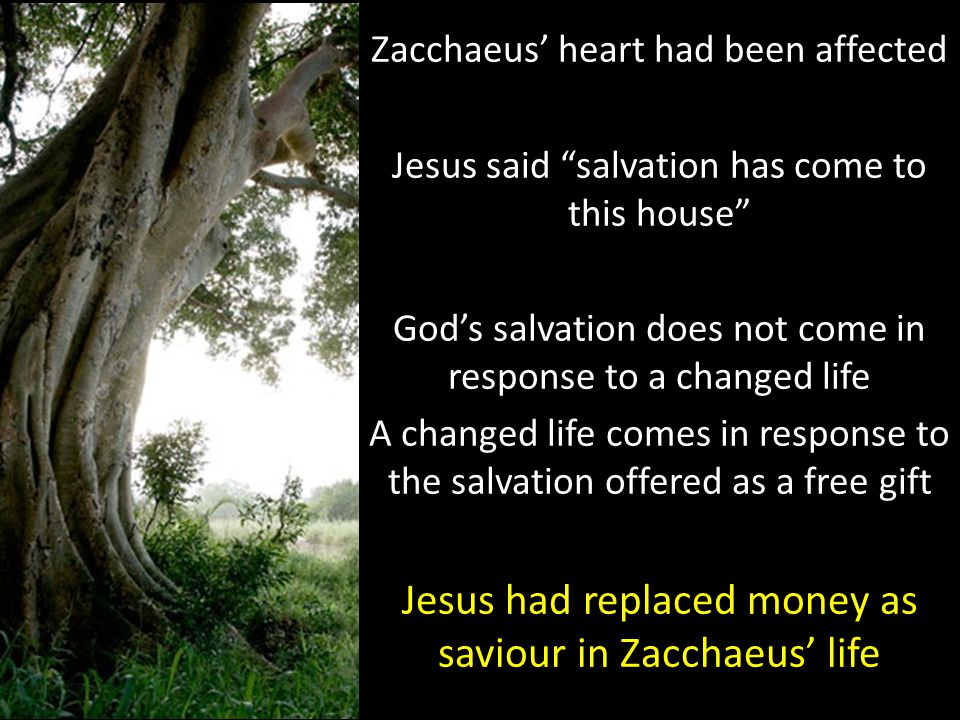 Zacchaeus' heart had been affected Jesus said salvation has come to this house God's salvation does not come in response to a changed life A changed life comes in response to the salvation offered as a free gift Jesus had replaced money as saviour in Zacchaeus' life