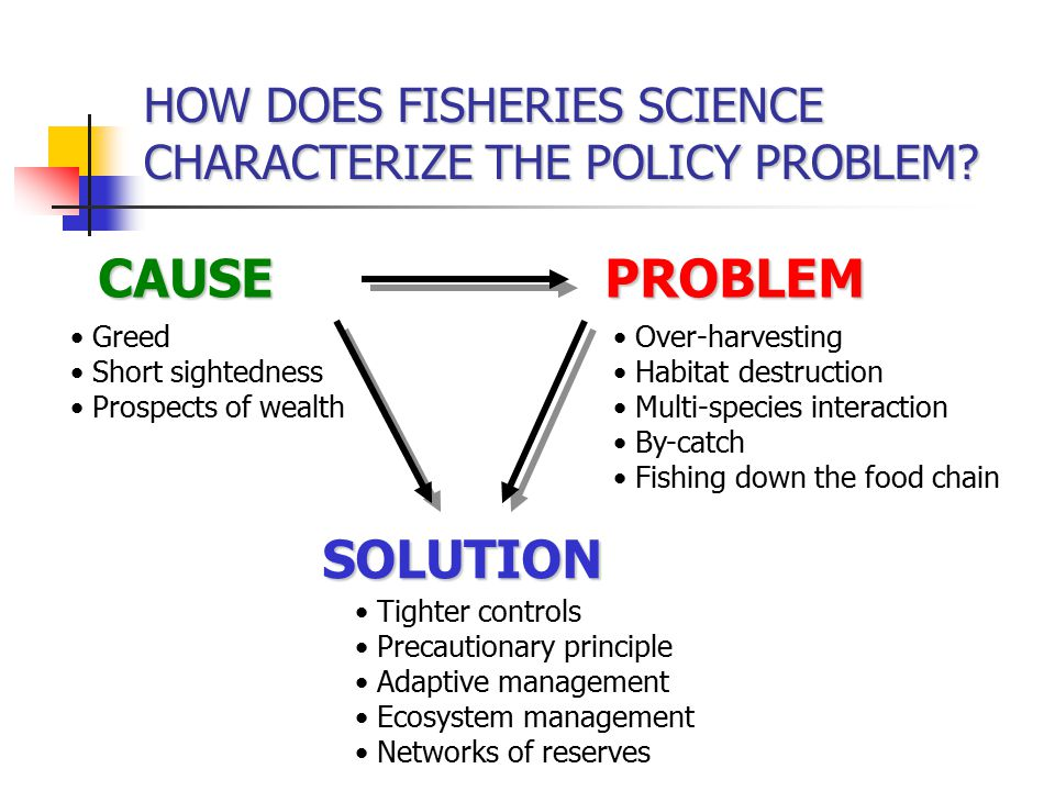 HOW DOES FISHERIES SCIENCE CHARACTERIZE THE POLICY PROBLEM.