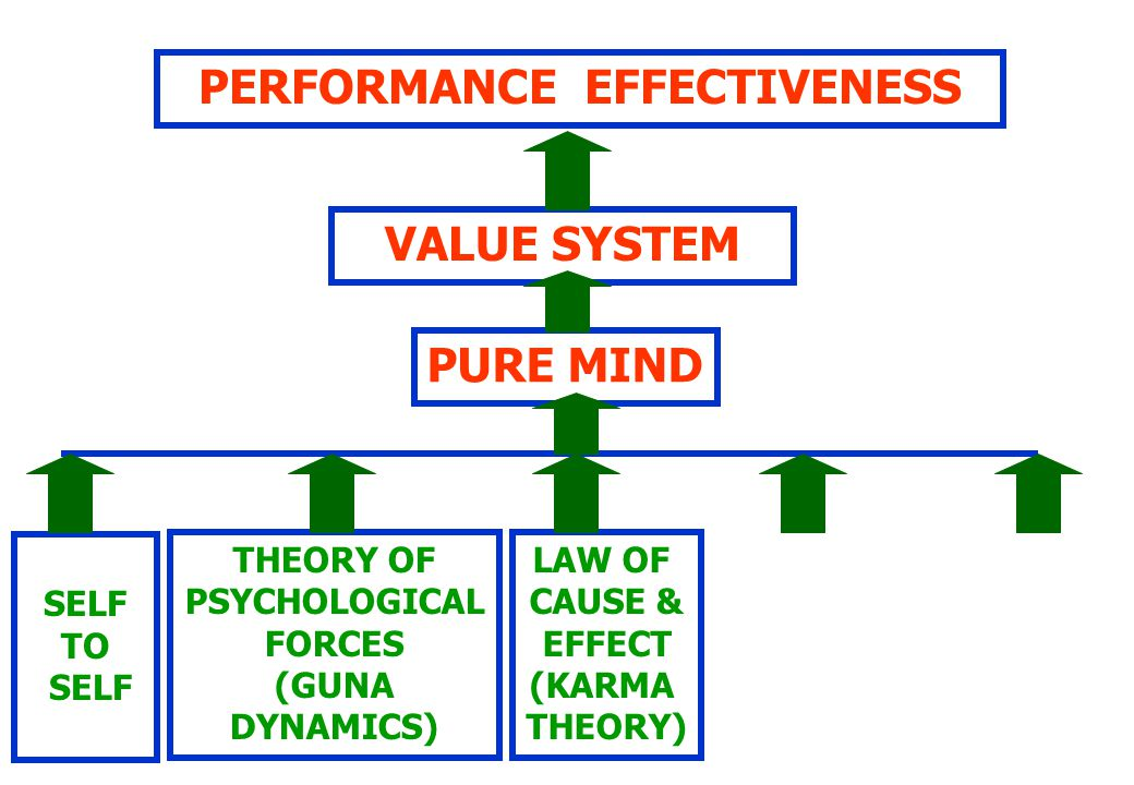 PERFORMANCE EFFECTIVENESS VALUE SYSTEM PURE MIND SELF TO SELF THEORY OF PSYCHOLOGICAL FORCES (GUNA DYNAMICS) LAW OF CAUSE & EFFECT (KARMA THEORY)