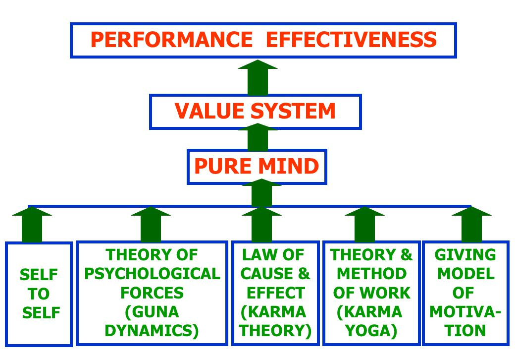 PERFORMANCE EFFECTIVENESS VALUE SYSTEM PURE MIND SELF TO SELF