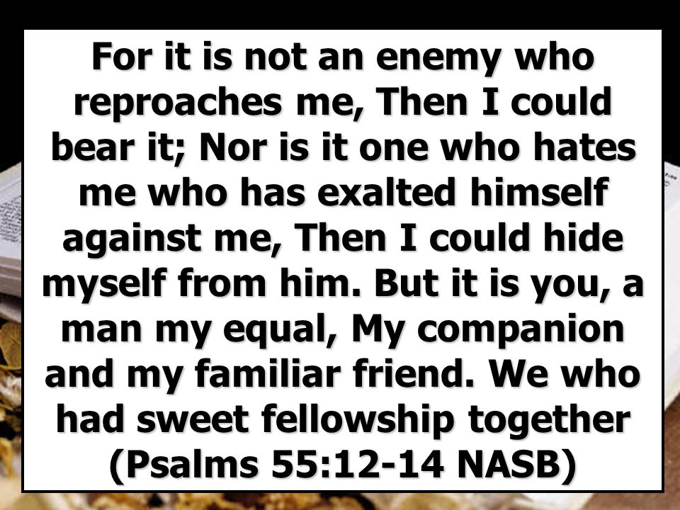 For it is not an enemy who reproaches me, Then I could bear it; Nor is it one who hates me who has exalted himself against me, Then I could hide myself from him.