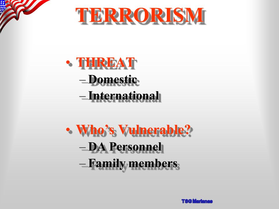 THREATTHREAT –Domestic –International Who's Vulnerable Who's Vulnerable.