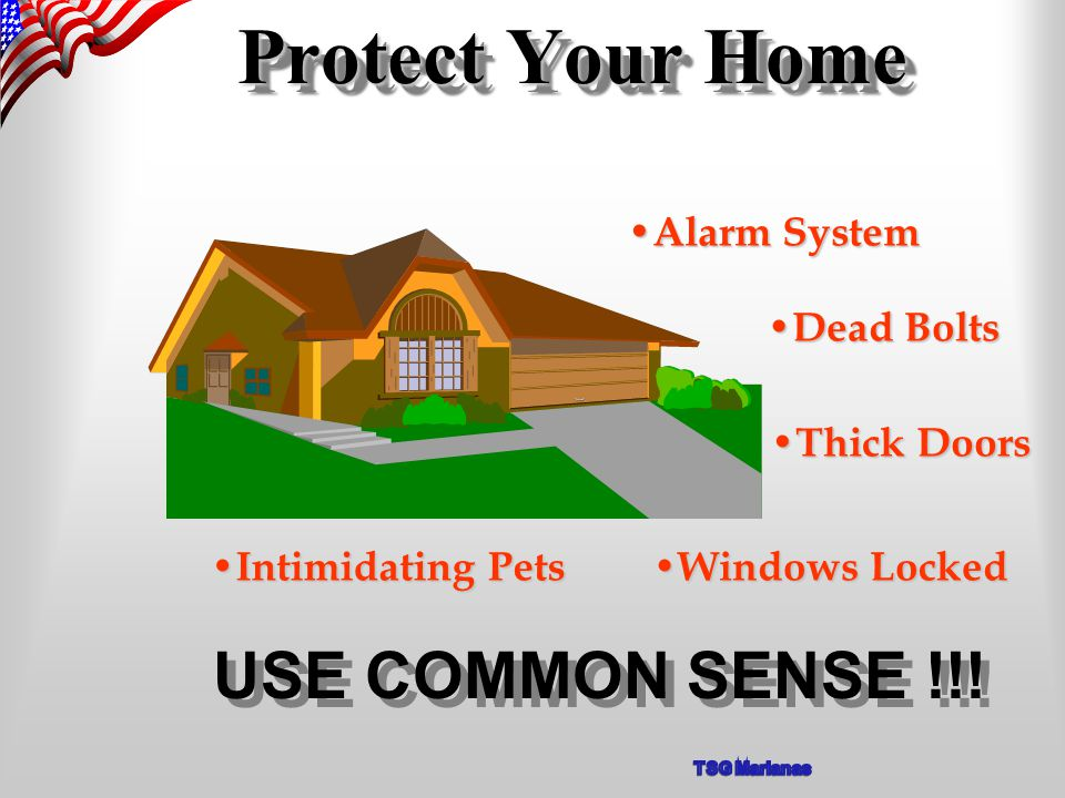 Protect Your Home Alarm System Alarm System Dead Bolts Dead Bolts Thick Doors Thick Doors Windows Locked Windows Locked Intimidating Pets Intimidating Pets USE COMMON SENSE !!!