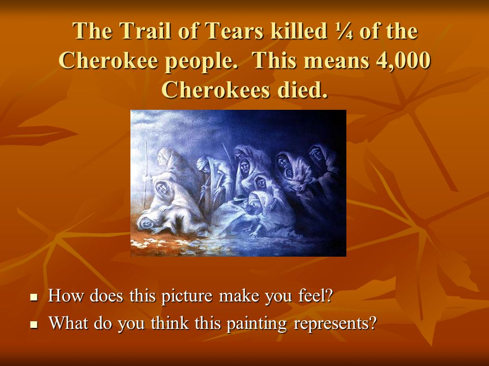 The Trail of Tears killed ¼ of the Cherokee people.
