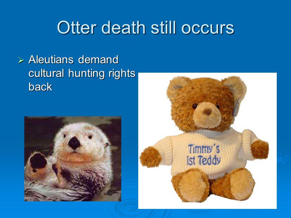 Otter death still occurs  Aleutians demand cultural hunting rights back