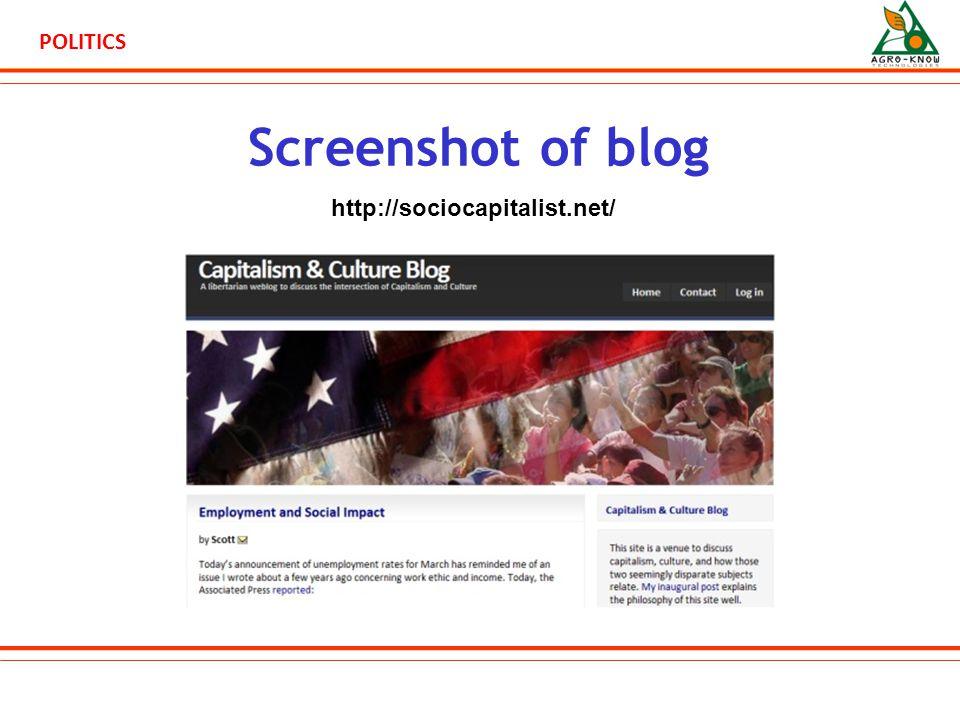 POLITICS Screenshot of blog http://sociocapitalist.net/