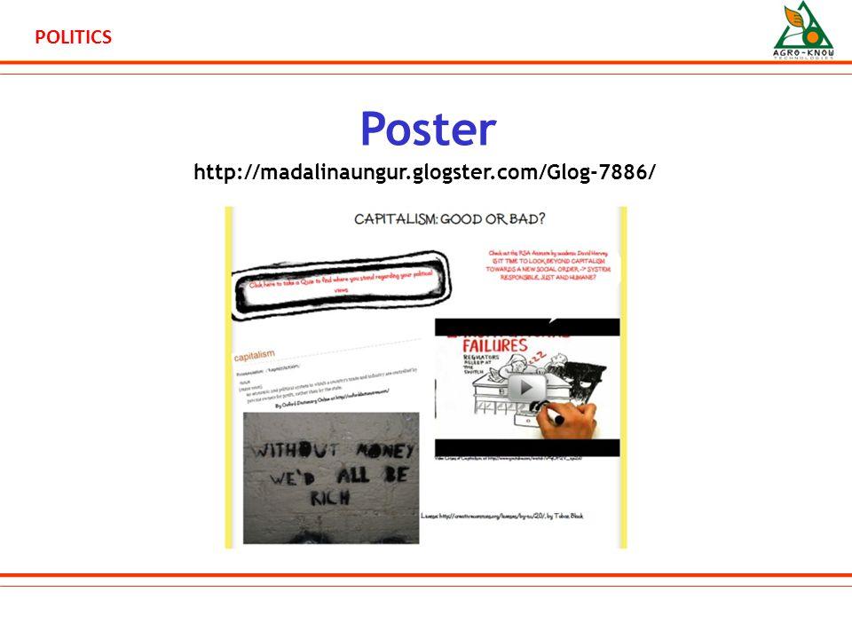 POLITICS Poster http://madalinaungur.glogster.com/Glog-7886/