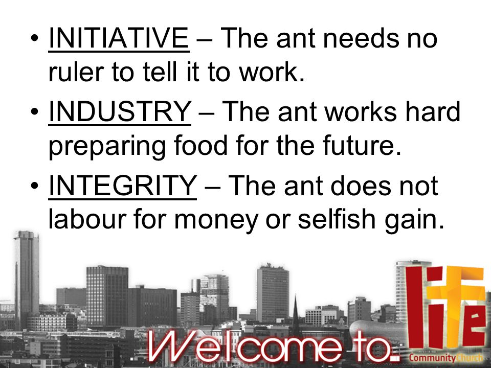 INITIATIVE – The ant needs no ruler to tell it to work.