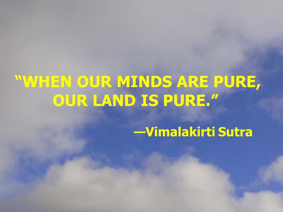 """WHEN OUR MINDS ARE PURE, OUR LAND IS PURE."" —Vimalakirti Sutra"