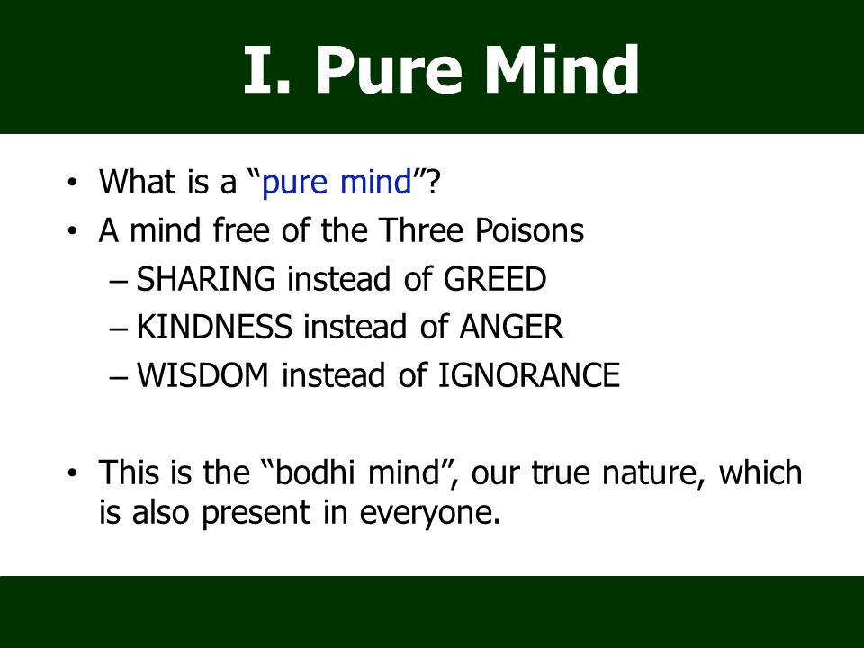"What is a ""pure mind""? A mind free of the Three Poisons – SHARING instead of GREED – KINDNESS instead of ANGER – WISDOM instead of IGNORANCE This is t"