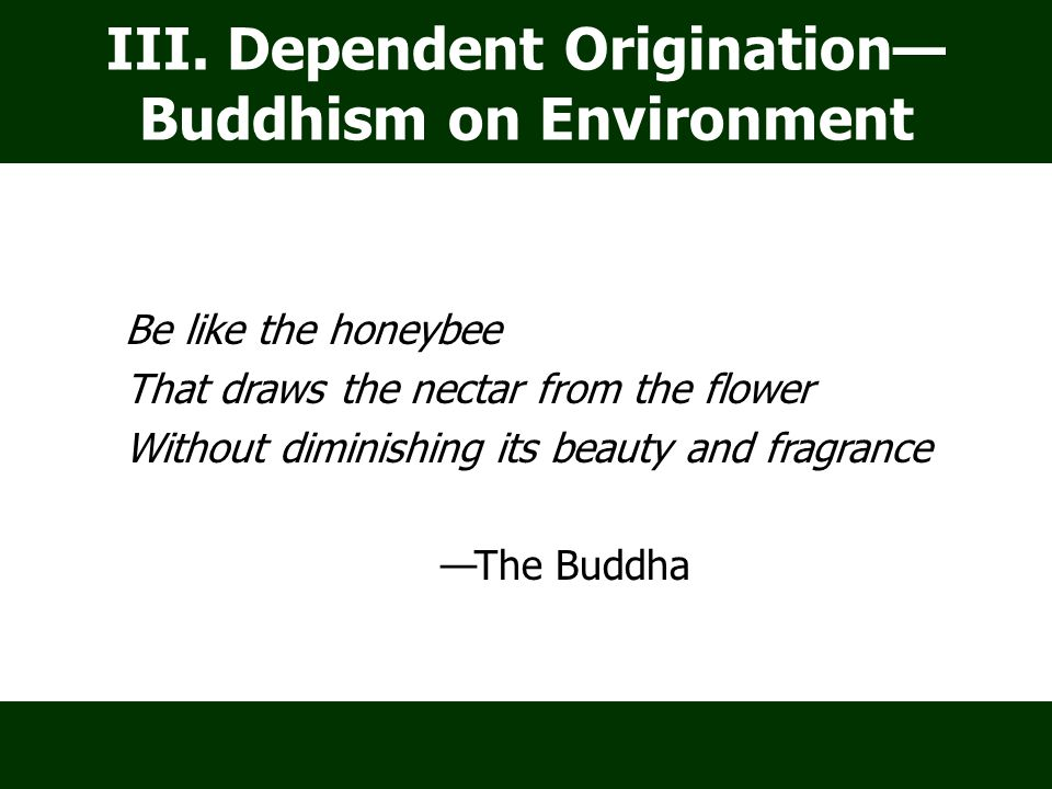 III. Dependent Origination— Buddhism on Environment Be like the honeybee That draws the nectar from the flower Without diminishing its beauty and frag