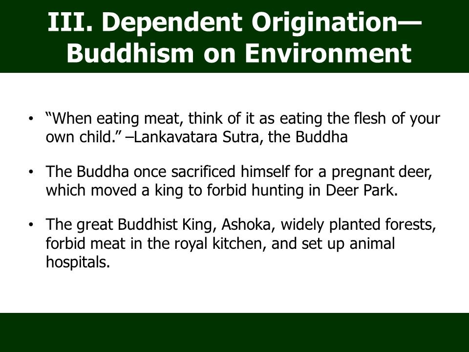 When eating meat, think of it as eating the flesh of your own child. –Lankavatara Sutra, the Buddha The Buddha once sacrificed himself for a pregnant deer, which moved a king to forbid hunting in Deer Park.