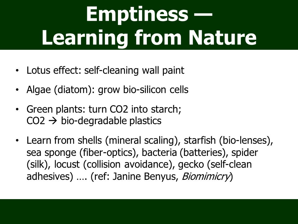 Emptiness — Learning from Nature Lotus effect: self-cleaning wall paint Algae (diatom): grow bio-silicon cells Green plants: turn CO2 into starch; CO2