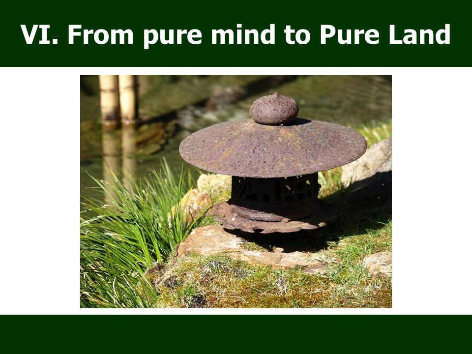 VI. From pure mind to Pure Land