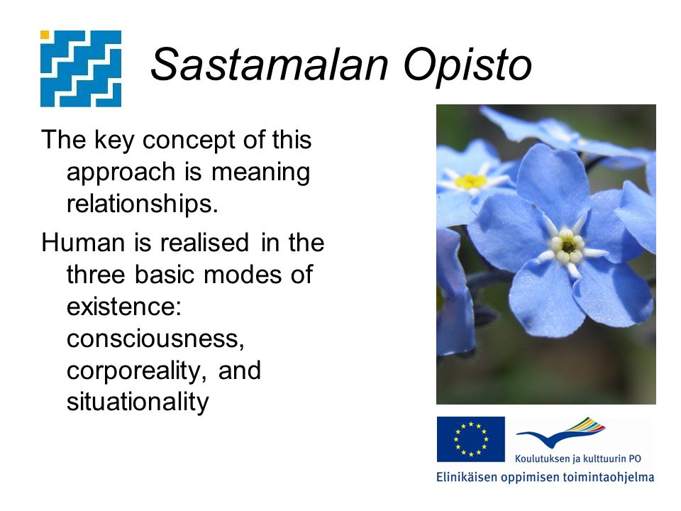 Sastamalan Opisto The key concept of this approach is meaning relationships.