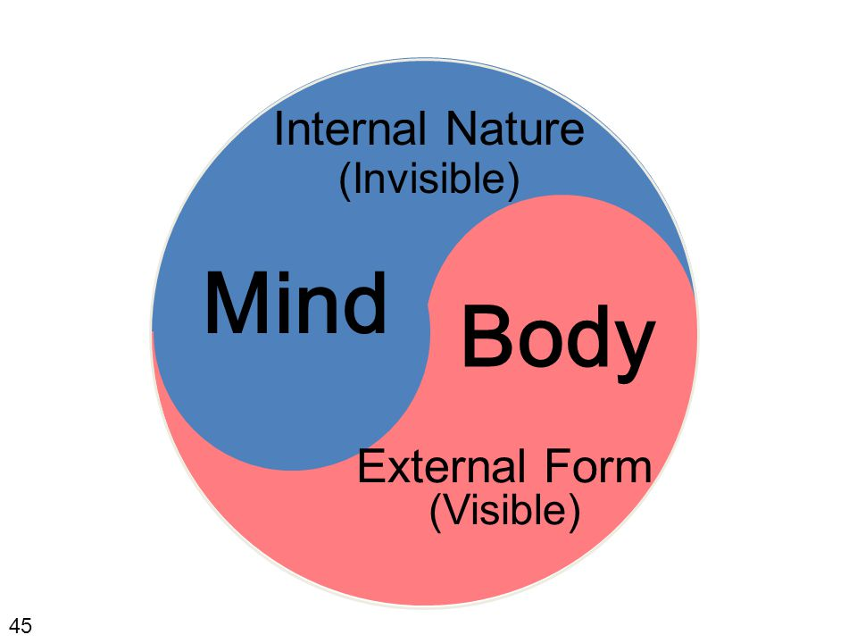External Form (Visible) Mind Body 45 Internal Nature (Invisible)
