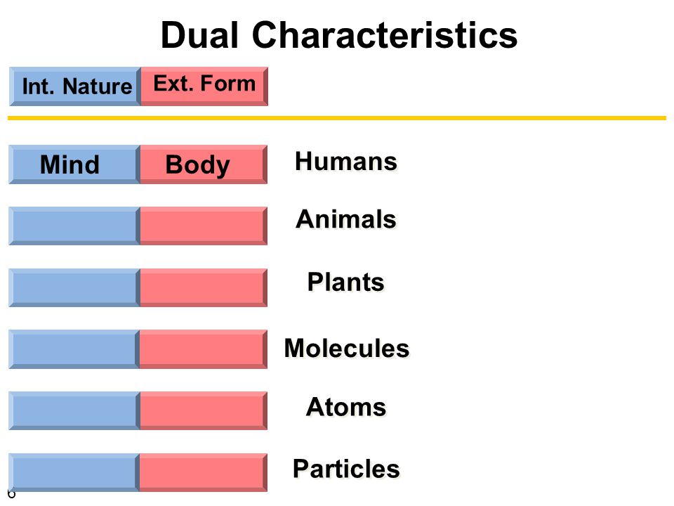 17 Int.Nature Ext. Form Mind Instinct Body Tropism Body Atoms Body  Particles Energy   Nat.