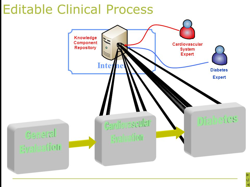 Internet Knowledge Component Repository Editable Clinical Process Cardiovascular System Expert Diabetes Expert
