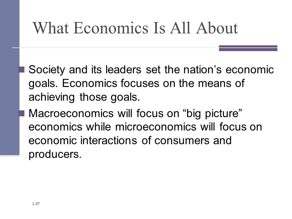 What Economics Is All About Society and its leaders set the nation's economic goals.
