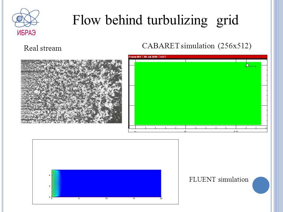 Flow behind turbulizing grid Real stream CABARET simulation (256х512) FLUENT simulation