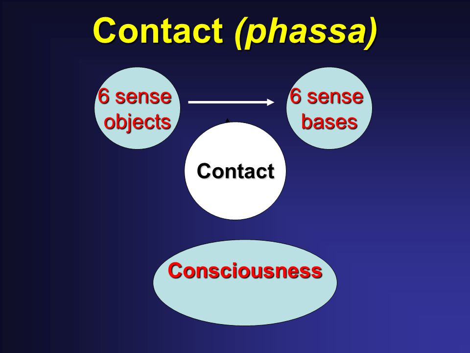 Contact (phassa) Consciousness 6 sense objects bases Contact
