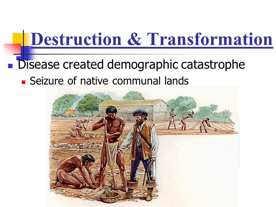 Destruction & Transformation Disease created demographic catastrophe Seizure of native communal lands