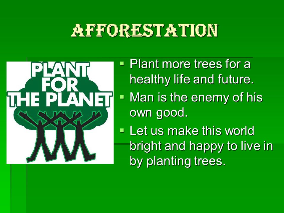 Afforestation  Plant more trees for a healthy life and future.