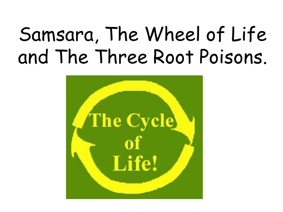 Samsara, The Wheel of Life and The Three Root Poisons.
